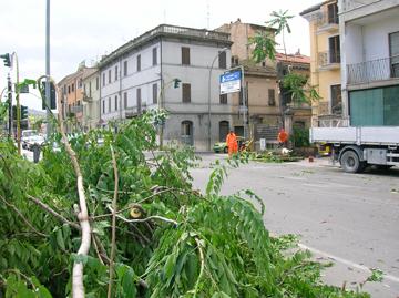 L'albero spezzato in via Gino Moretti