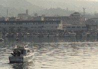 Si terrà oggi pomeriggio la processione in mare