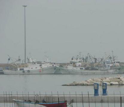 Scatta il fermo pesca
