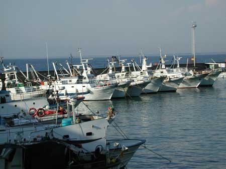 Pescherecci di nuovo in mare per la fine del fermo biologico