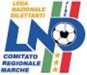 Lega Nazionale Dilettanti, Comitato Regionale Marche