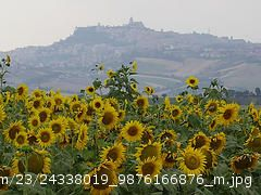 Un panorama di Lapedona