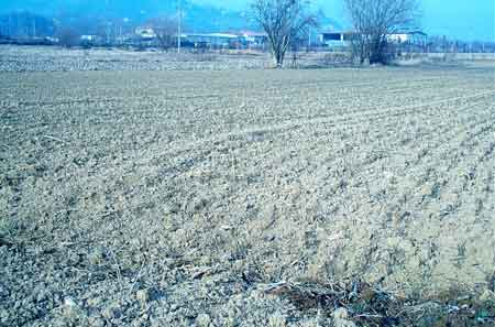 Allarme siccità nelle Marche