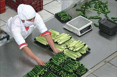 L'agroindustria sambenedettese cerca la ripresa