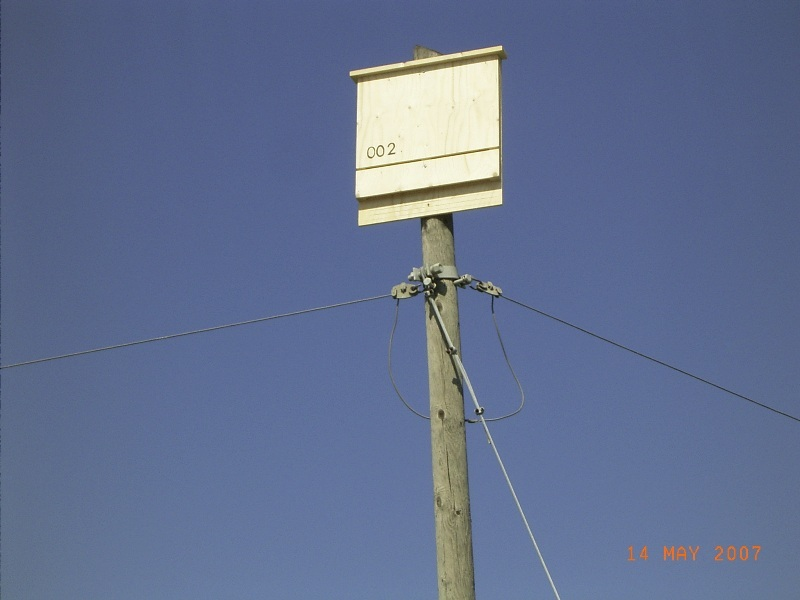 1. Bat Box alla Sentina