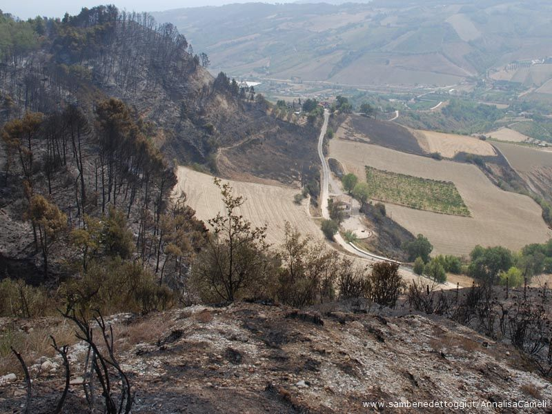 L'area bruciata è compresa fra contrada Cabiano e contrada Penne