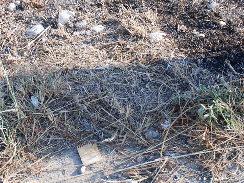 Sul luogo dell'incendio, vicino al guardrail, dei fiammiferi. Forse legati all'incendio?