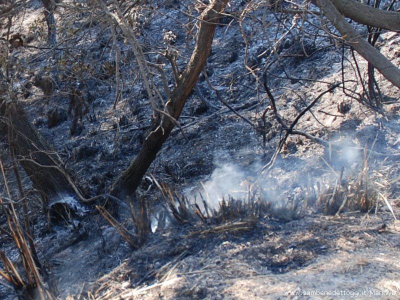 Ore 17, 30 : il sottobosco continua a fumare, nonostante l'acqua