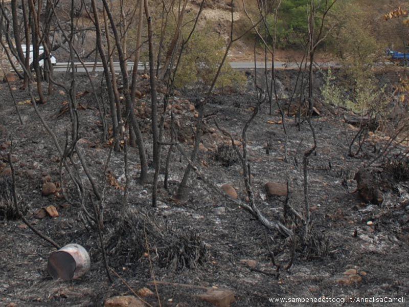 Il fuoco è arrivato ad entrambi i costoni della strada Cuprense