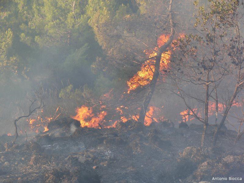 Un'immagine dell'ultimo incendio di Ripatransone