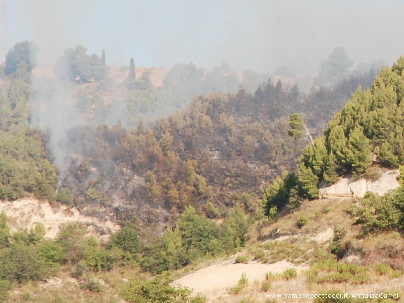 La vasta porzione  dell'incendio su un lato della collina