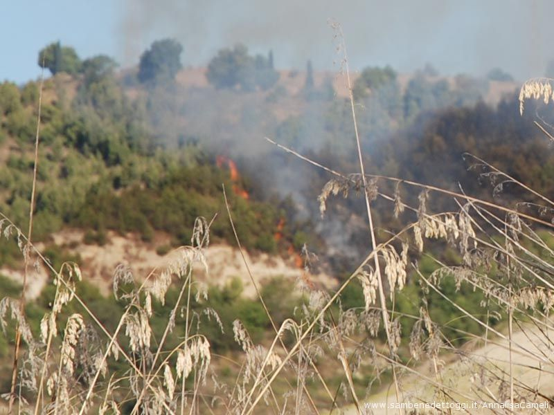 Le fiamme divampano velocemente per l'erba secca e la sterpaglia