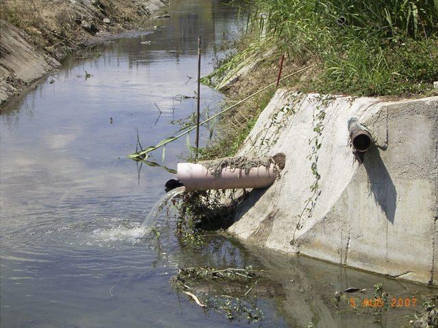 Uno scarico di acque nel fosso collettore della Sentina