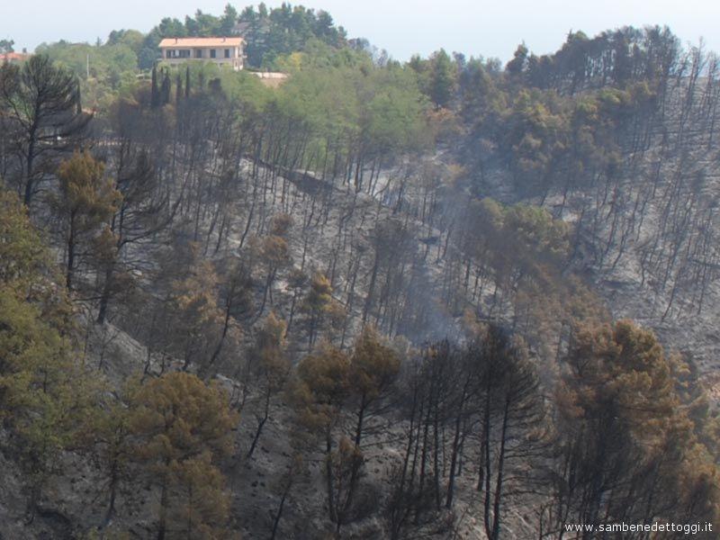 L'ultimo incendio a Ripatransone ha bruciato circa 10 ettari di bosco.