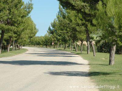 Una strada della zona industriale di Centobuchi