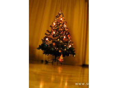 Quest'anno sotto l'albero di Natale dei nidi comunali ci sarranno i regali realizzati dai genitori dei più piccoli