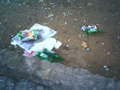 La sporcizia nelle strade è frutto della inciviltà dei cittadini