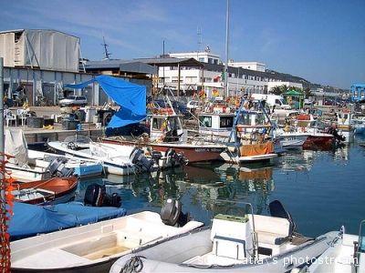 Un angolo del porto di San Benedetto (soffio.katia's photostream)