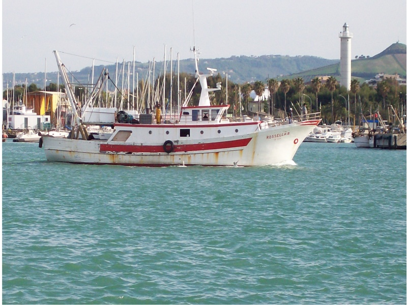 Un peschereccio entra nella zona portuale di San Benedetto.