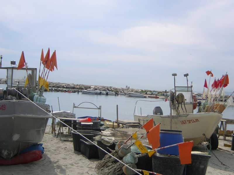 Barche al porto di Martinsicuro