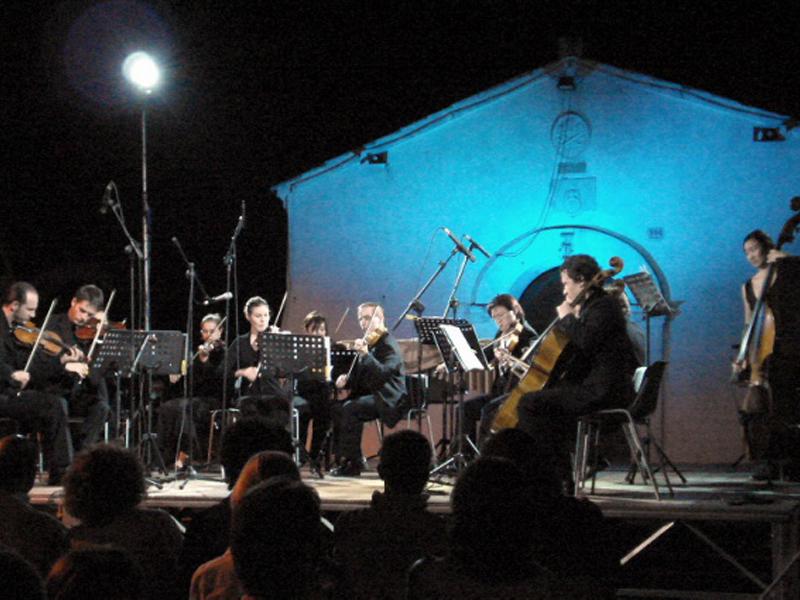 L'orchestra di archi Mannheimer Ensemble