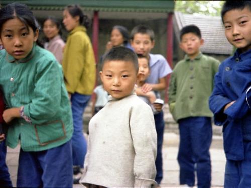 Sono attualmente 2174 i cinesi regolarmente presenti nella provincia di teramo