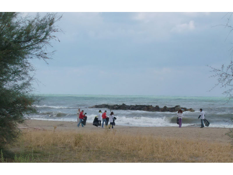 Alcuni volontari durante la pulizia delle spiagge