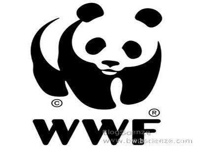 WWF, accolto il ricorso al Tar