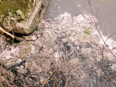 Inquinamento nel fiume Tordino