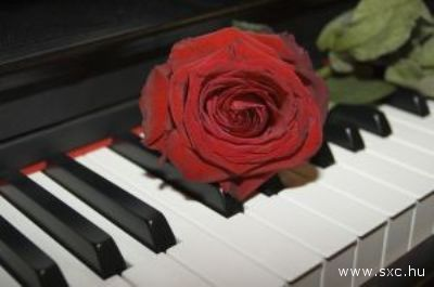 Un romantico pianoforte