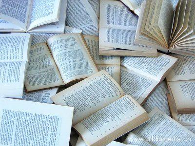 Letteratura