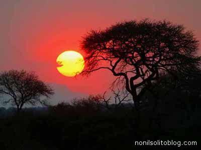 Pesaggio africano