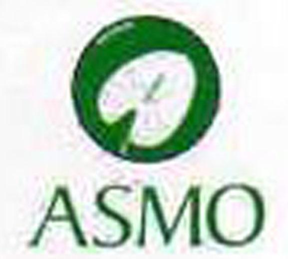 Il logo dell'Asmo
