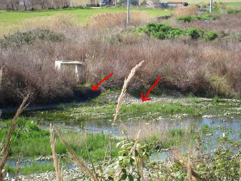 In una delle vasche, nel dettaglio è possibile scorgere i teloni inseriti all'epoca per impermeabilizzare la vasca e parte del substrato ghiaioso necessario al drenaggio dell'acqua