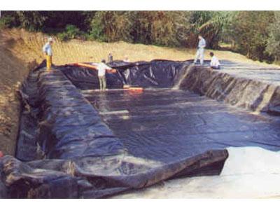 L'allestimento di una vasca di fitodepurazione