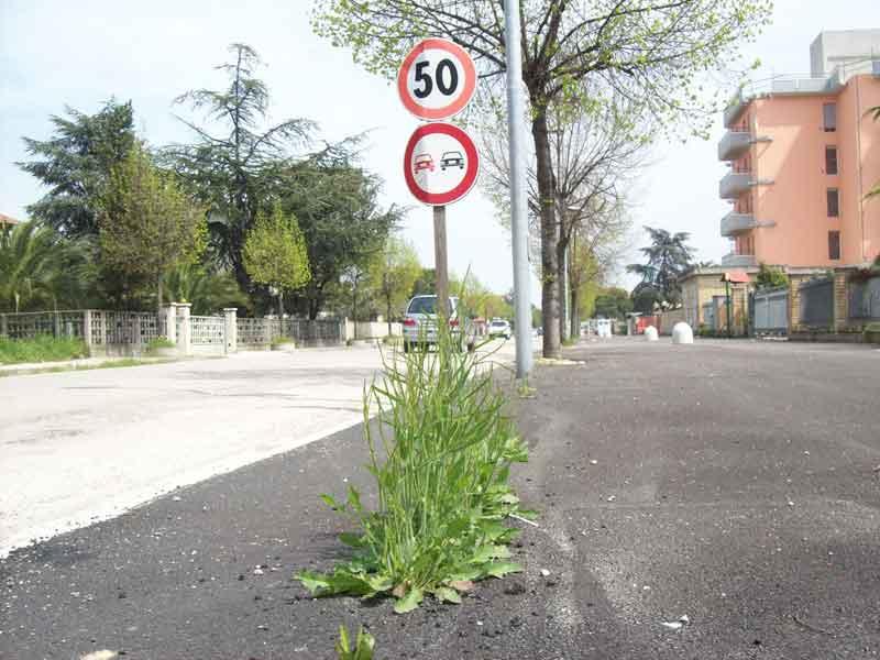 Un tratto dei marciapiedi a San Giovanni: l'erba spunta da sotto l'asfalto