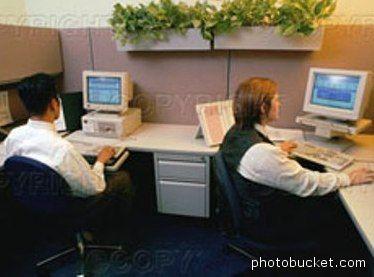 Impiegati impegnati al PC