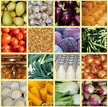 L'alimentazione deve essere varia per assicurare un bilanciamento ottimale tra i diversi nutrienti.