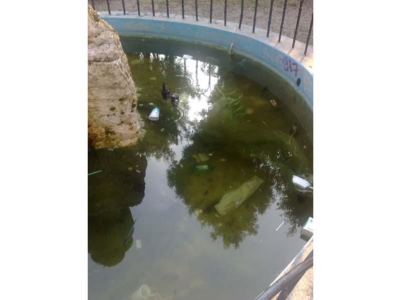 Sporcizia in una fontana nella pineta del centro