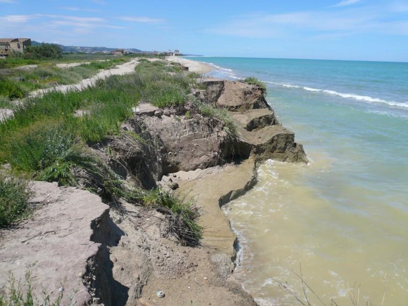 Gli effetti dell'erosione costiera nella Sentina
