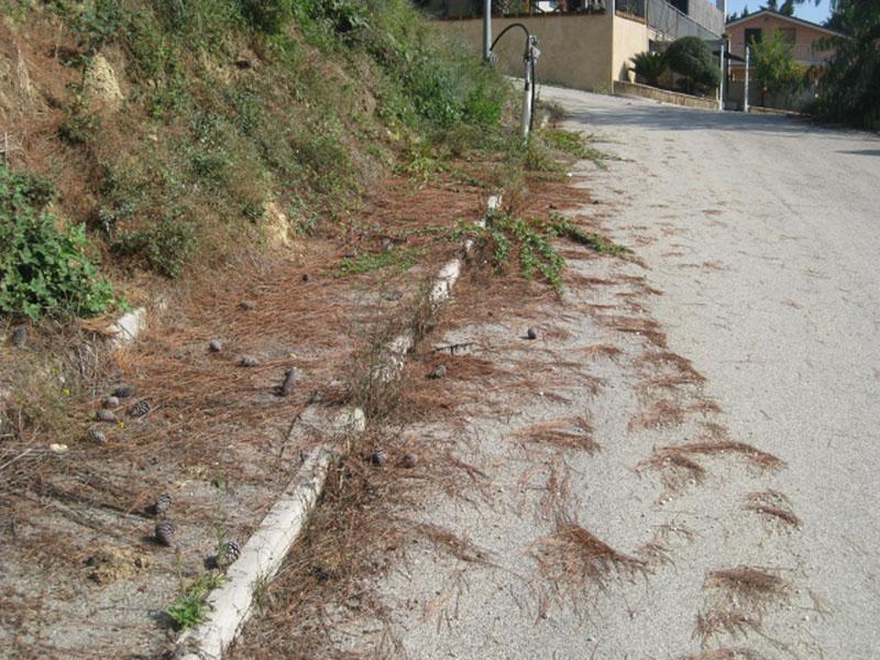 Via Cile, i marciapiedi e le strade come abbandonate