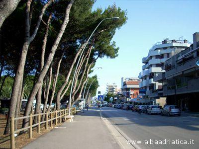 Una delle pinete sul lungomare di Alba Adriatica