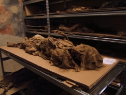 Le mummie di Monsampolo