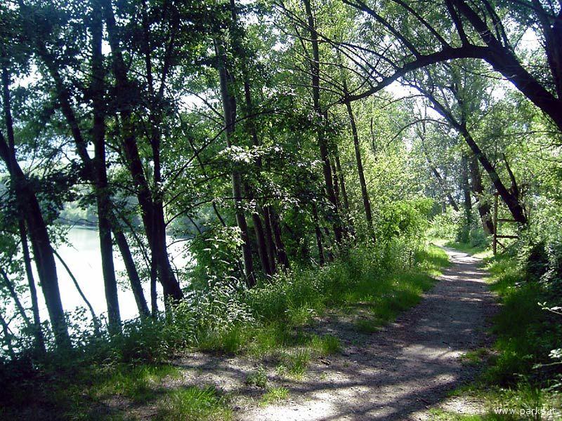 Un percorso ciclabile