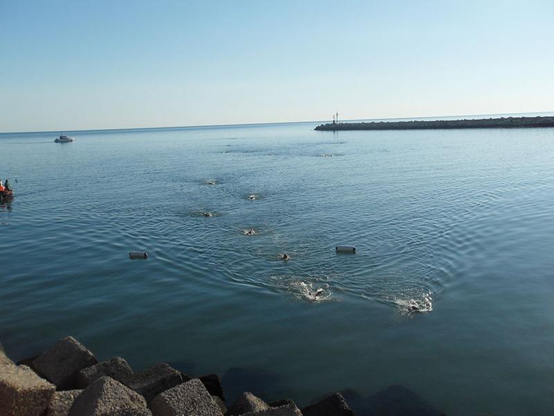 Memorial Aurini, la nuotata da punta a punta del Porto