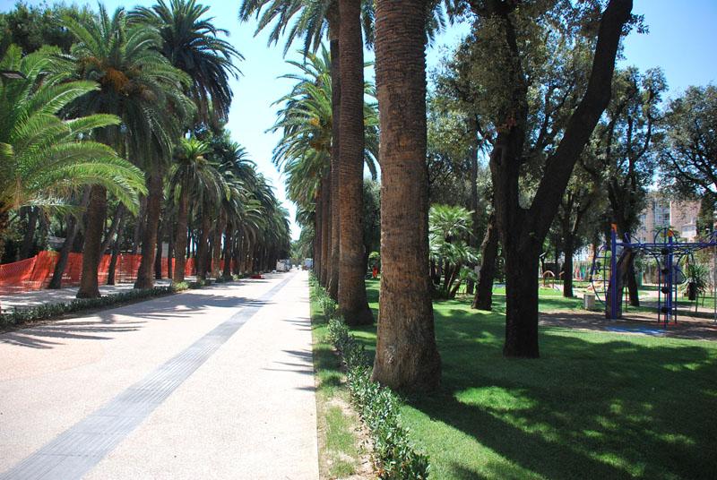 Viale Pasqualetti, la pineta del centro pedonale, durante i lavori di riqualificazione