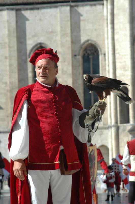 falconiere della Piazzarola