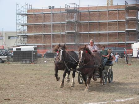 un momento della gimkana a cavallo