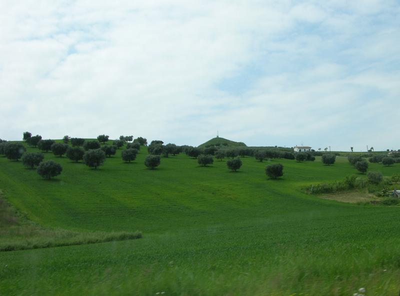 Colline alle spalle della Statale 16 nella zona di Porto d'Ascoli