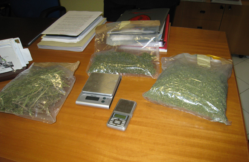 La marijuana sequestrata nel corso dell'operazione